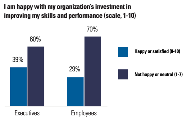 Organizational investment in skills and performance